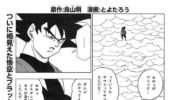 Capítulo 19 del Manga de Dragon Ball Super