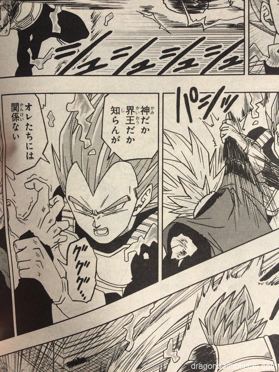 Dragon Ball Super Capítulo 19 13