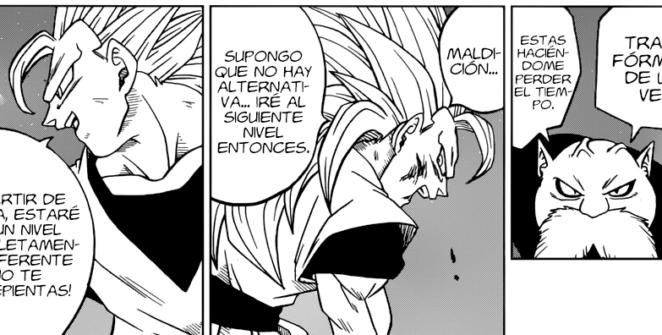 Manga 29 Dragon Ball Super
