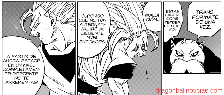 Manga 29 Dragon Ball Super